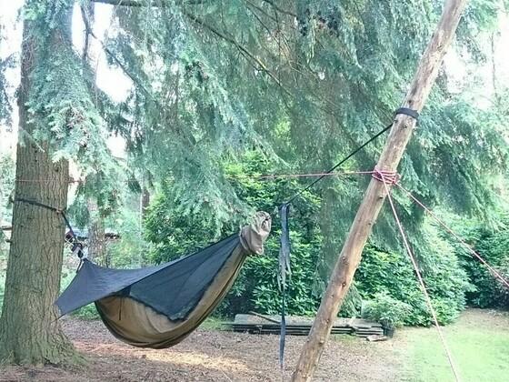 Hängematte mit nur einem Baum aufgehängt.