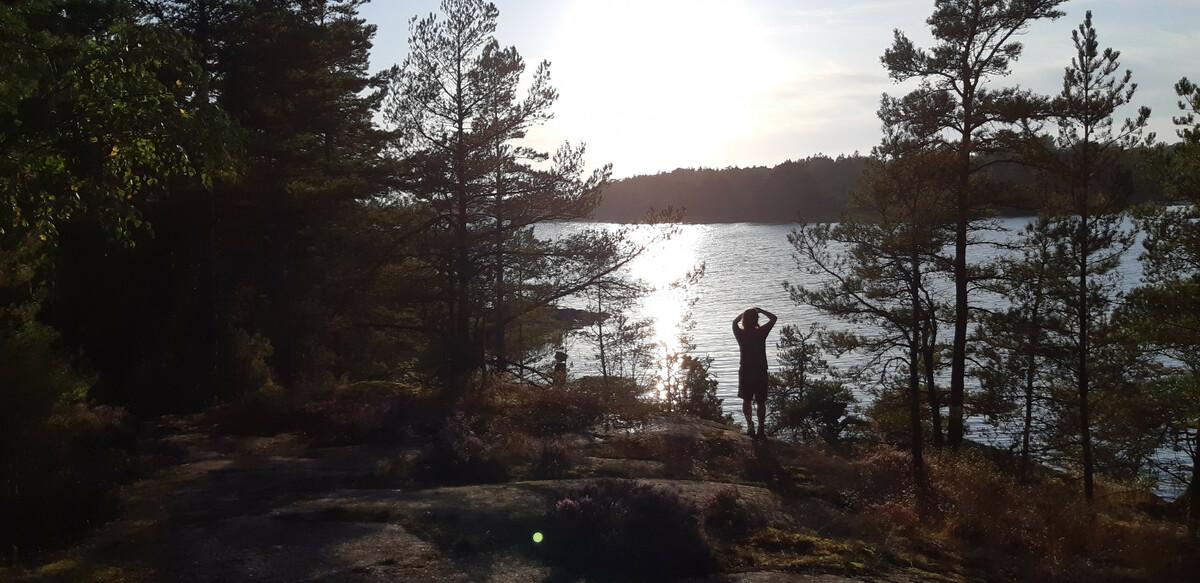 Impressionen aus dem Tyresta Nationalpark, Schweden