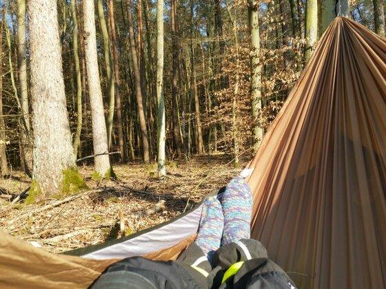 Abhängen im Dorfwald